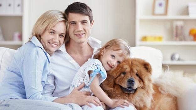 Wills & Trusts dog-young-family Direct Wills Sunninghill